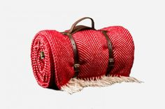 buyers-guide-picnic-tweedmill-picnic-blanket
