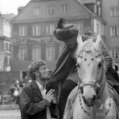Drama Film, Stony, Lion Sculpture, Novels, Horses, Statue, Animals, Photos, Historia