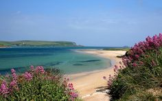 Rock, Cornwall. White sand, flowers in the dunes, turquoise sea... the stuff of dreams - but it's real :-)