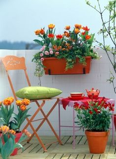 Hang shelves from the rail, this way you can rotate the flowering pots! Use light weight pottery that can be moved easily. Make sure to leave the floor space open for patio furniture for you to sit back and enjoy!!