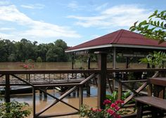 Situated in the village of Sukau on Borneo's famous Kinabatangan River lies the Kinabatangan Riverside Lodge. The lodge has 33 stilted chalets, each containing either two or three separate en suite rooms which are simply furnished but clean and comfortable.
