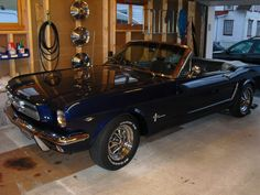 1965 Ford Mustang Standard Convertible  My dream car!