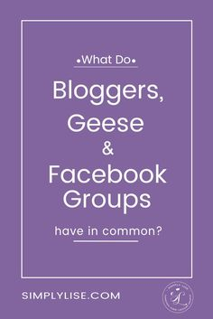 What do bloggers, geese and FB groups have in common?