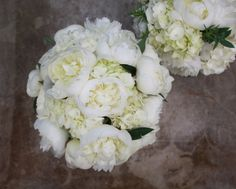 Perfect white blooms.