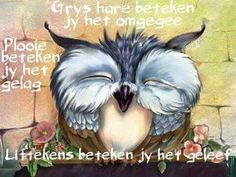 Creative Owl Logo, Icon and Illustration Designs Owl Bird, Bird Art, Happy Owl, Whimsical Owl, Owl Pictures, Beautiful Owl, Tier Fotos, Cute Owl, Cute Animals