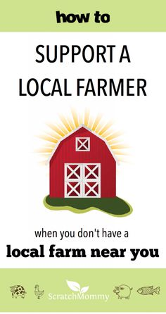 how-to-support-a-local-farmer-when-you-dont-have-a-local-farm-near-you-scratch-mommy