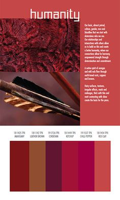 Color Trends Fall Winter 2014 2015   Autumn Winter 2014-2015 Trends from Spin Expo