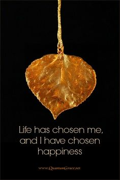 """Life has chosen me and I have chosen happiness."" —Unknown: www.QuantumGrace.net ..*"