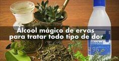 Mistura de ervas serve para reumatismo   Receita Naturais