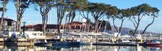 The Yacht Club Yacht Club, New York Skyline, Cruise, Book, Travel, Viajes, Cruises, Destinations, Traveling