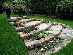 landscaping ideas backyard by So Bai