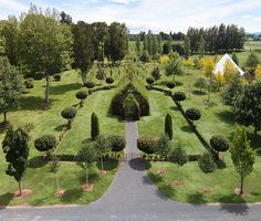 Look inside a lush church made entirely from living trees.