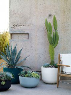 cactus and succulents in Naoto Fukasawa planters. Outdoor Planters, Garden Planters, Outdoor Gardens, Succulent Outdoor, Modern Planters, Balcony Planters, Balcony Gardening, Fall Planters, Rooftop Garden