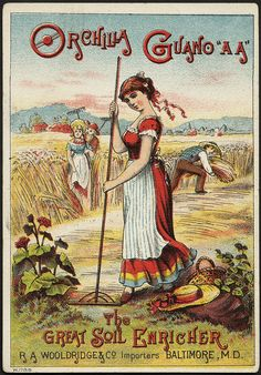 """This late 19th century ad for """"Orchilla Guano A.A."""" emphasizes the tail end of the fertilizing process."""