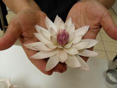 No tutorial- Water lilly handmade gum paste flower. Sugar Paste Flowers, Icing Flowers, Fondant Flowers, Edible Flowers, Paper Flowers, Cake Decorating Techniques, Cake Decorating Tutorials, Fondant Flower Tutorial, Fondant Decorations
