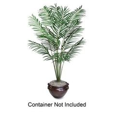 Artificial Areca Palm Tree, 6-ft. Overall Height ** You can get more details by clicking on the image.
