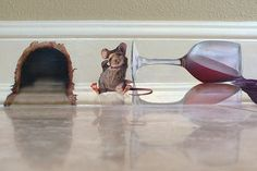 Mural of a little mouse who drank too much from a spilled glass of wine, Mural is located in a guest house in Lido Shores, FLorida, on the baseboard trim. Totally hungover, the little guy sits by his mouse hole and holds his aching head.