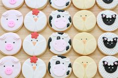 Bb sweets - cutest cookies on earth ESP the piggies