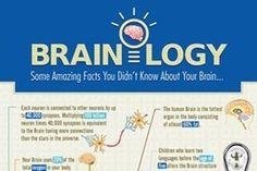 15 fascinerende weetjes over ons brein | BREKEND