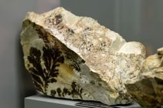 Nestled in the Appellation Mountains of western North Carolina, off the scenic Blue Ridge Parkway, is the Spruce Pine Mining District one of the richest deposits of gems and minerals.   http://blog.thediggings.com/museum-of-north-carolina-minerals/