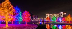 DFWChild - Where to See Holiday Lights in Dallas-Fort Worth in 2015