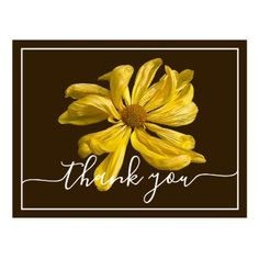 Photo Bright Yellow Chrysanthemum Brown Background Postcard Yellow Chrysanthemum, Photo Thank You Cards, Bright Yellow, Keep It Cleaner, Holiday Cards, Photo Gifts, Joy, Brown, Painting