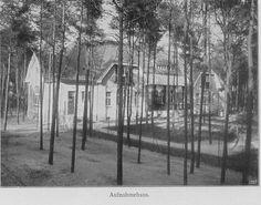 Schwarz-Weiß-Foto: Haus mit Bäumen im Vordergrund