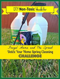 Since the weather has been so beautiful (well some parts of the country anyway) and this is a VERY important topic, I thought we should start the challenge off outside in the yard. A few days ago, I saw my neighbor using a well known chemical herbicide weed killer (that shall remain nameless, but I'll …