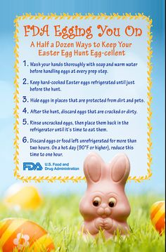 FDA egging you on with a half a dozen ways to make your Easter egg hunt egg-cellent! Food Safety, Egg Hunt, Kid Activities, Infographics, Holiday Recipes, Easter Eggs, Health Tips, Notes, Make It Yourself