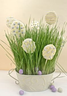 White chocolate egg pops with mini choccy eggs in wheatgrass - simple but beautifully effective