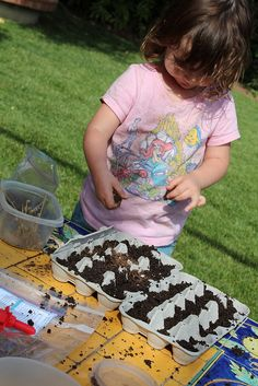 11. SEED STARTS Growing things is a very important lesson. I have done two variations on this project, one using cardboard egg cartons and t...