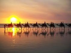 Camel ride on Cable Beach, Western Australia