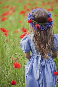 Trevillion Images - The Ultimate Creative Stock Photography - Flower Garlands, Photo Library, Mother Nature, Poppies, Stock Photos, Hair Styles, Creative, Flowers, How To Wear