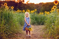Sussex County Sunflower Maze - Hudson Valley NY Photographer (15)