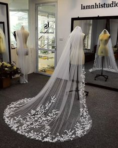 Bridal Veils, Wedding Veils, Wedding Dress Train, Wedding Dresses, Headpieces, Marie, Wedding Ideas, Fashion, Valentines Day Weddings