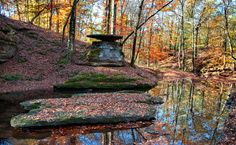 Title: Glenrock Branch Photographer: Bryan Burton Date Photo Taken: November 2013 Picnic Area, Picnic Table, Tennessee, Natchez Trace, Photo Contest, Fountain, Explore, Fall, Outdoor Decor