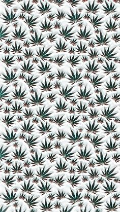 After greeting Android smartphone users, the dark display (dark mode) in the WhatsApp application has now visited iPhone users. But this version of Wh. Marijuana Wallpaper, Trippy Wallpaper, Screen Wallpaper, Marijuana Art, Marijuana Leaves, Dope Wallpapers, Aesthetic Wallpapers, Weed Stickers, Stoner Art