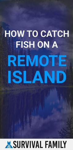 We want to take a deep dive (pun intended) into how you can catch fish if you were stranded on a remote island. Survival Family, Survival Prepping, Survival Skills, Survival Gear, Travel Captions, Kids Around The World, Women In Leadership, Primary Classroom, Financial Tips