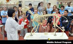 Adventures in Veterinary Medicine at Tufts University for Middle and High School students.