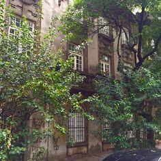 Descubre estas calles de México City col: Roma