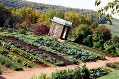 guess where? Monticello gardens