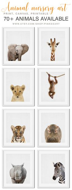 You'll Love This Safari Animal Nursery Decor, Baby Animal Nursery, Animal Nursery Jungle Baby Decor. Animal Art available as Print, Canvas and Digital. www.etsy.com/shop/PinkeeArt