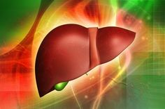Liver Enzymes and Liver Cleanse