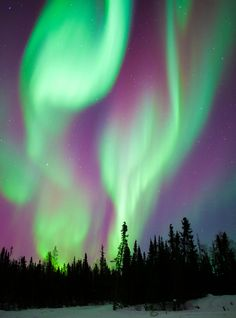 Cosmic Ray by OctoberLife aurora borealis Landscape Photography, Nature Photography, Scenic Photography, Night Photography, Landscape Photos, See The Northern Lights, To Infinity And Beyond, Light Painting, Photos Du
