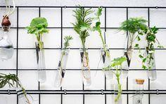 Idee di giardinaggio creativo - IKEA