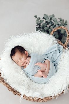 Newborn Photos, Baby Photos, Baby Boy Newborn, Newborn Photography, Studio Family Portraits, Nursery, Photoshoot, Poses, Children