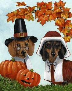 dachshund thanksgiving | Dachshund Thanksgiving | Thanksgiving