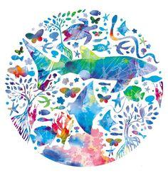 円になる海の生き物たち (c)TETSURO OKABE