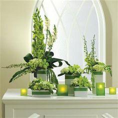 Google Image Result for http://veldkamps.com/images/catalog/Flowers/359/BN087-11J_LR_Large.jpg