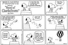 This strip was published on January 20, 1980. Snoopy and Woodstock.